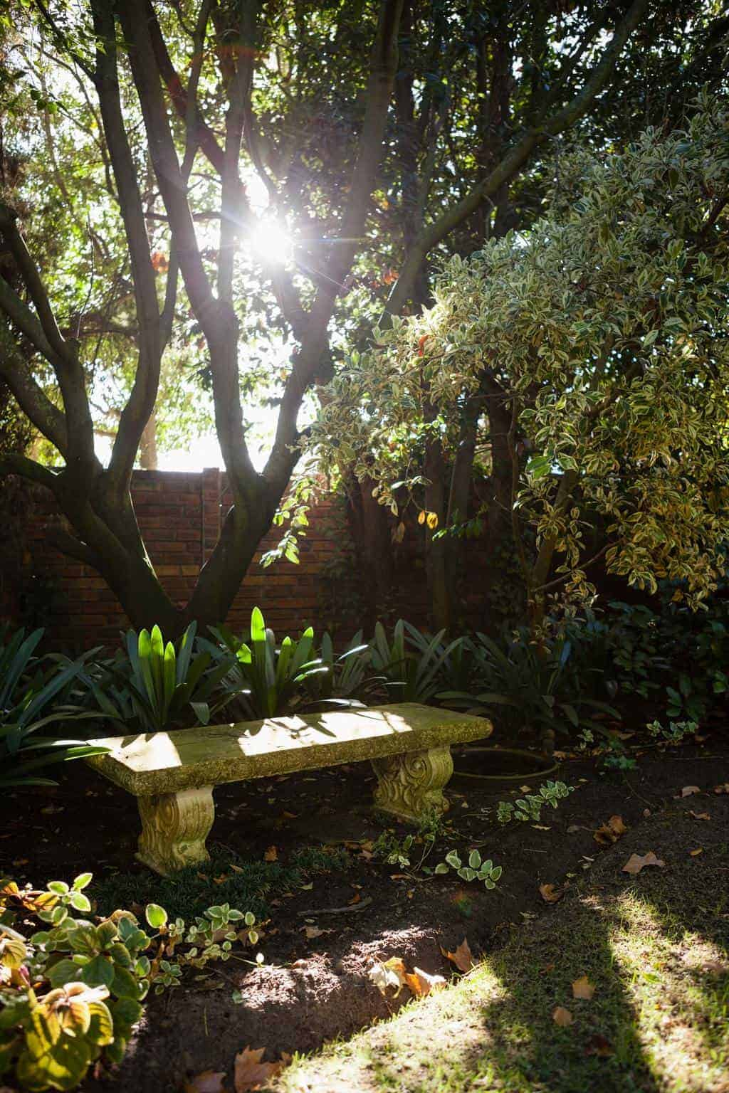 Stone bench by plants against surrounding wall