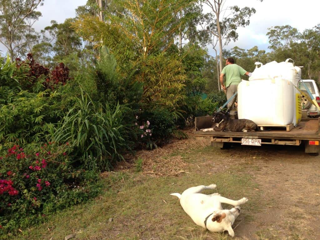 self-sufficiency-garden-grove-fertilizing