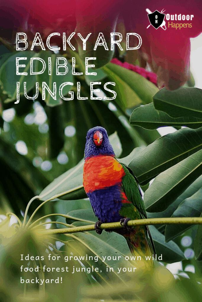 backyard-edible-jungles-garden