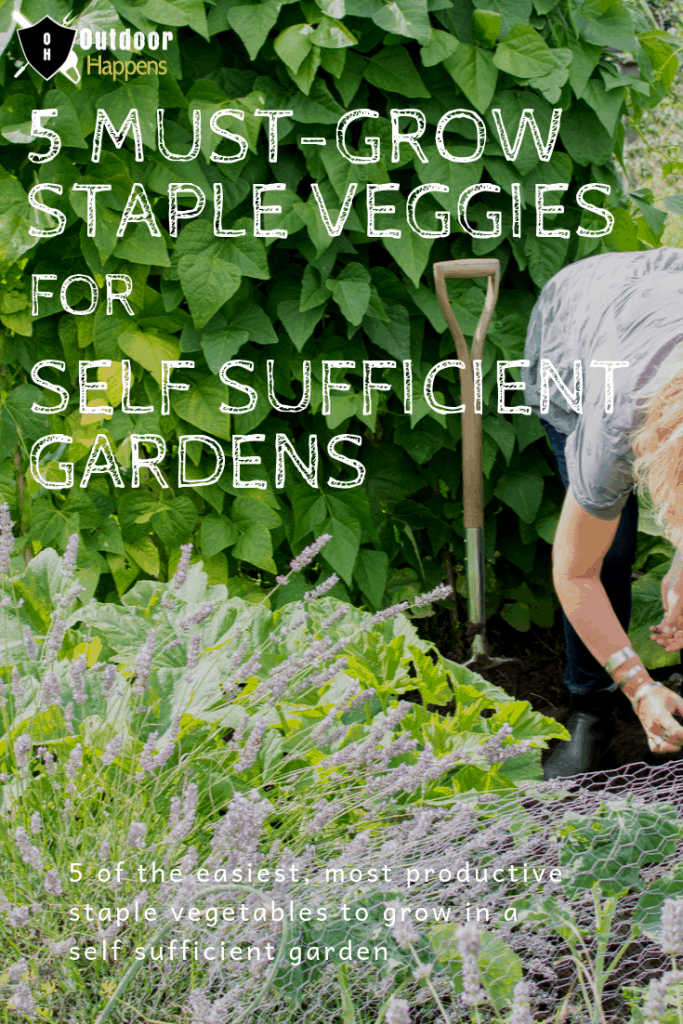 must-grow-vegetables-self-sufficient-gardens