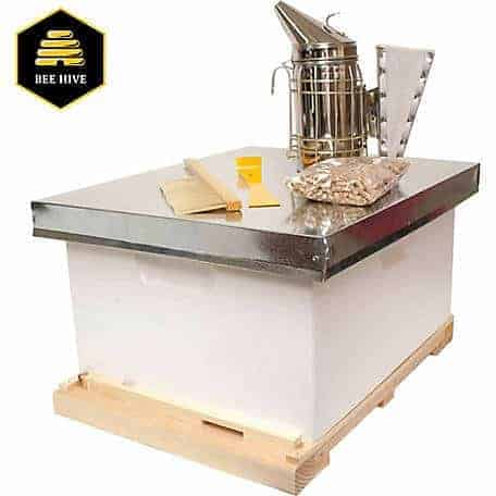 Honey-bee-starter-kit