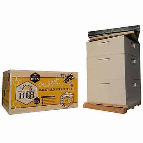 beekeeping-kit