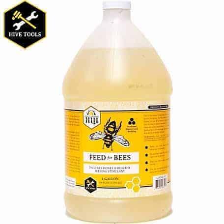 honey-bee-feed