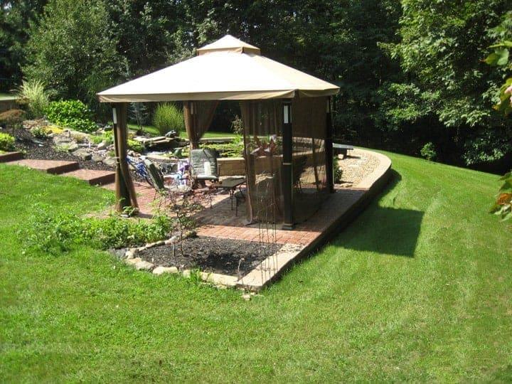 back-lawn-hydroseeding-after-3-weeks