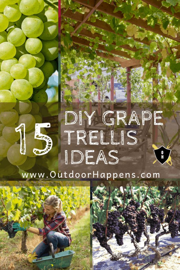 Backyard-Grape-Vine-Trellis-Arbor-Design-Ideas