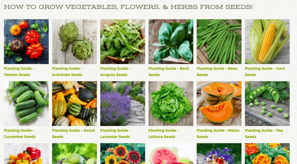 Seed-varieties