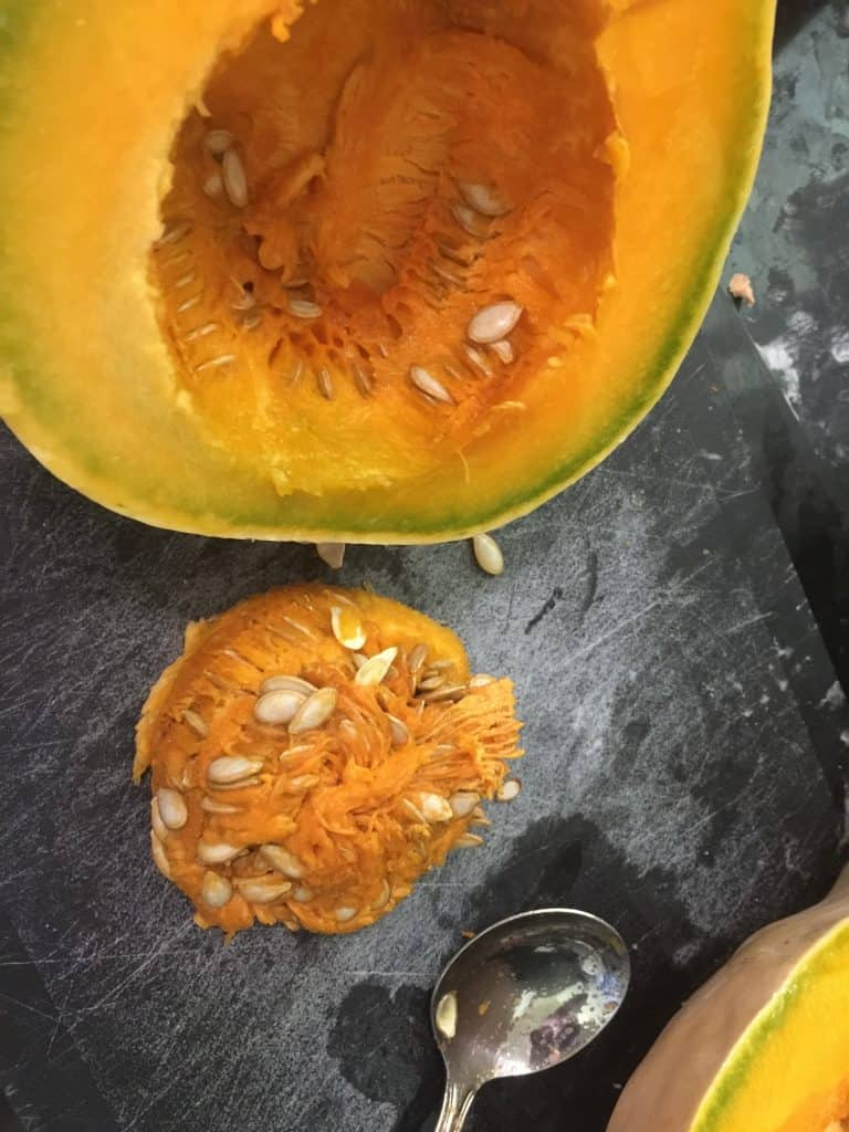 Seeds-for-saving-next-to-pumpkin
