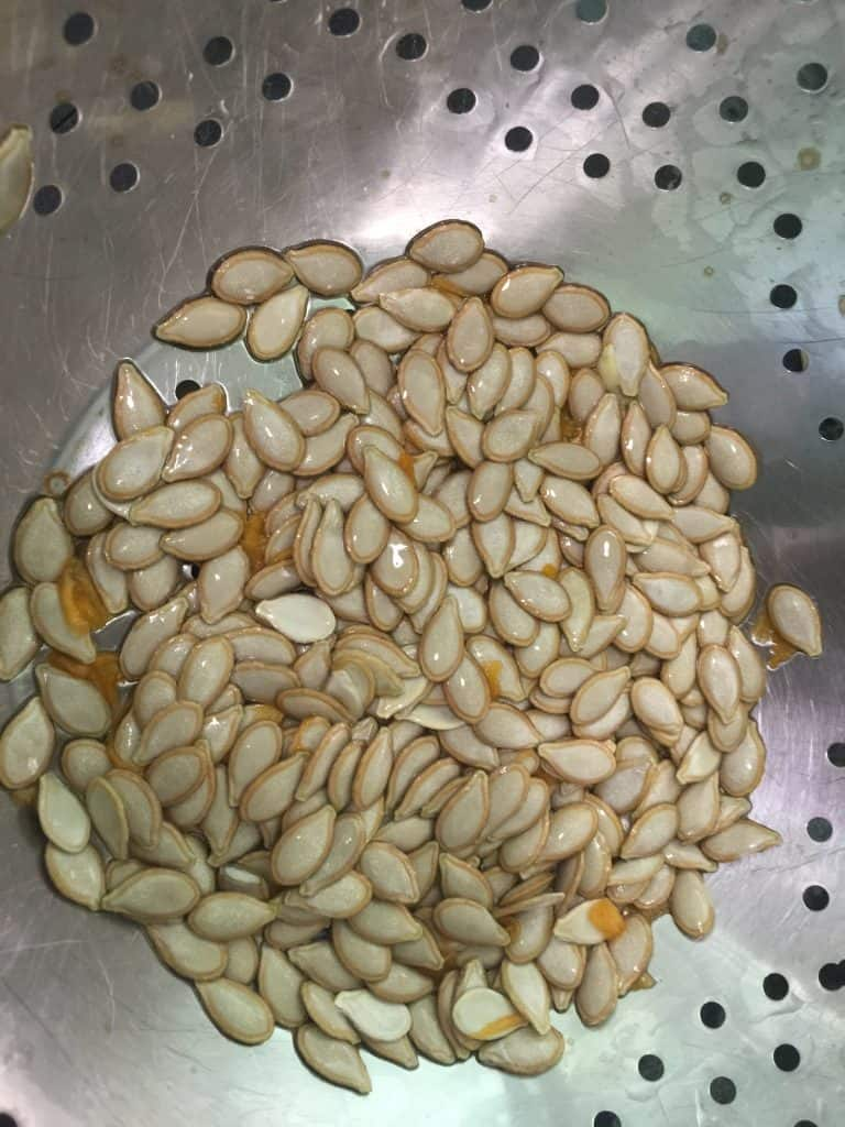 Cleaning-pumpkin-seeds-with-water