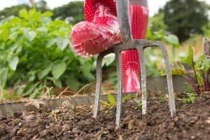 till-garden-without-tiller