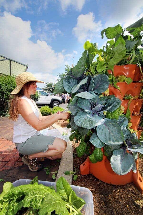 garden-tower-2-project-vertical-gardening