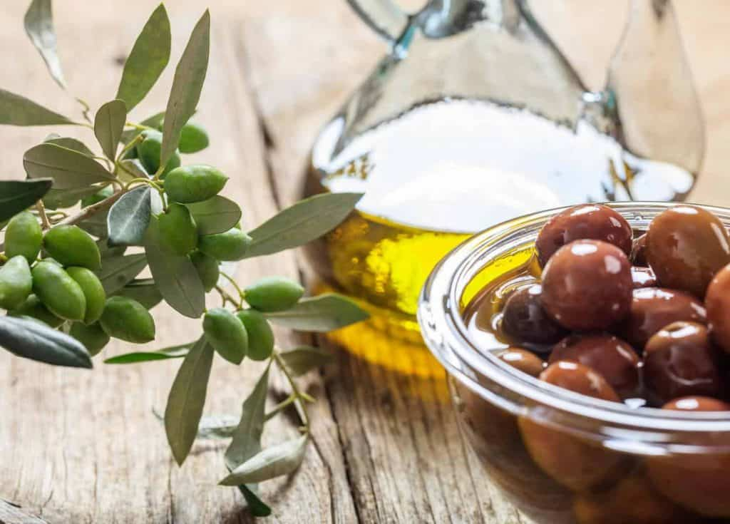 How-to-grow-an-olive-tree-make-olive-oil