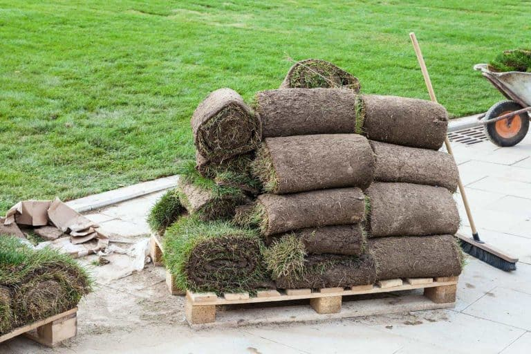 what-is-sod-turf-on-pallet