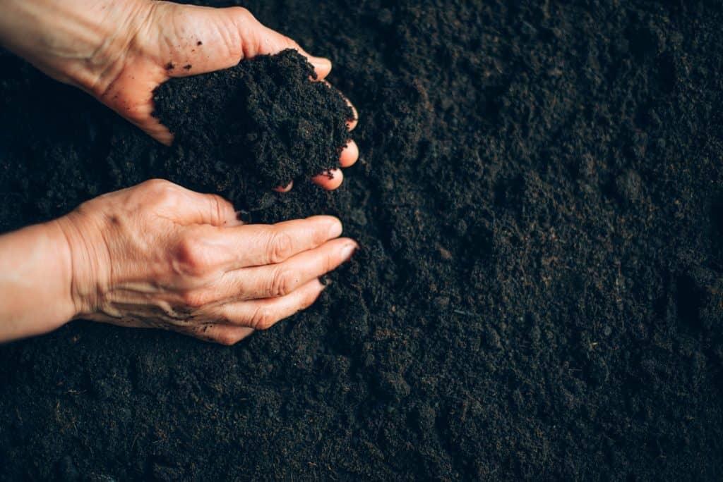 healthy-garden-soil