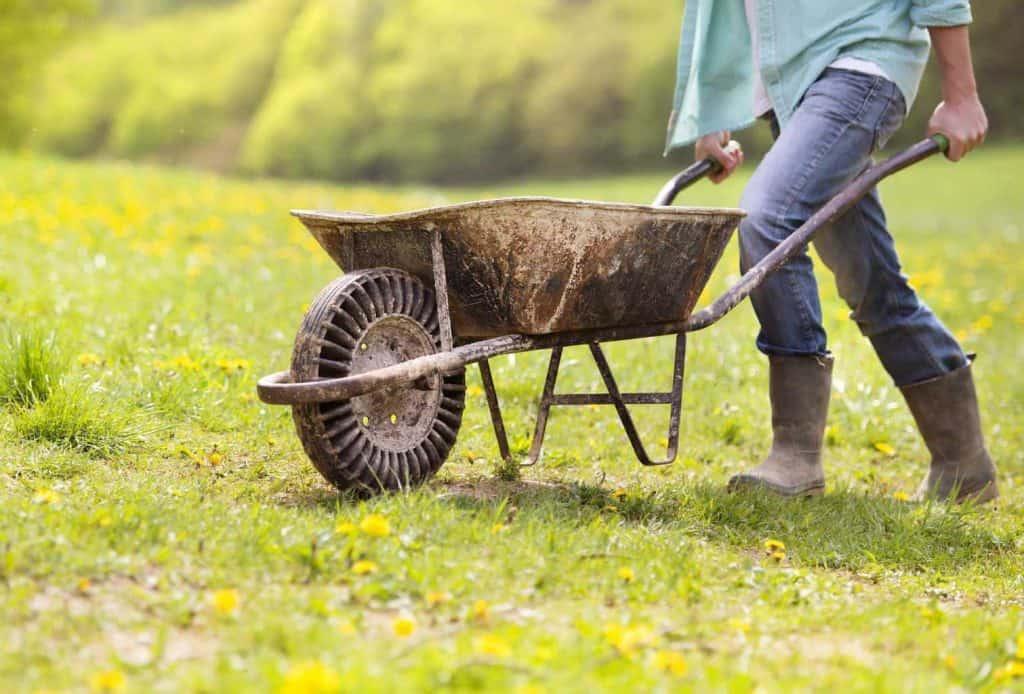 best-compost-bin-under-40-geobin