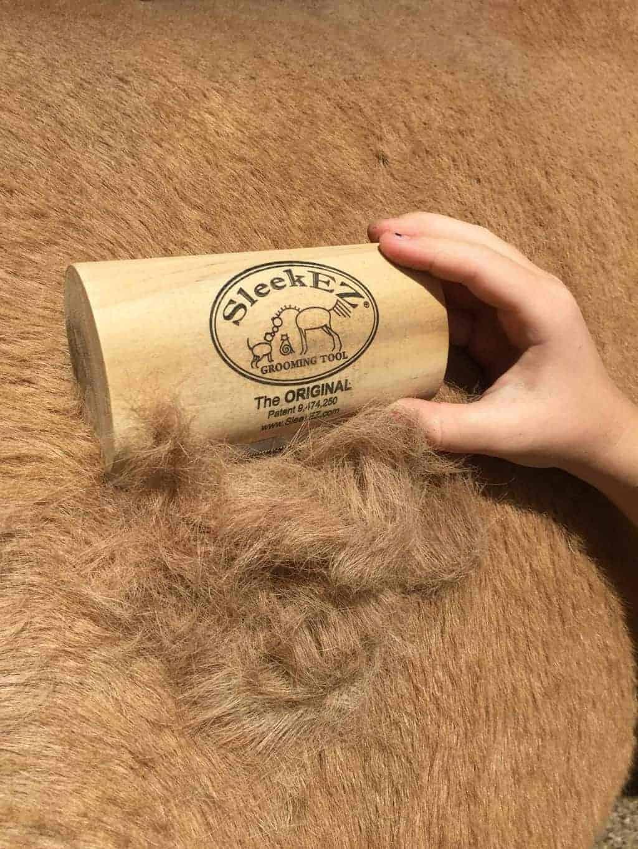 SleekEZ-reviews-dog-horse_4061