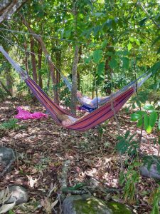best-backyard-hammock-2020-review