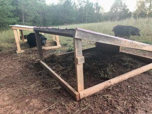 Pigs-Farrowing-Hut-DIY