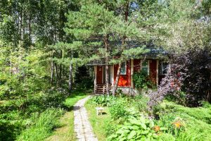 forest-garden-food-web