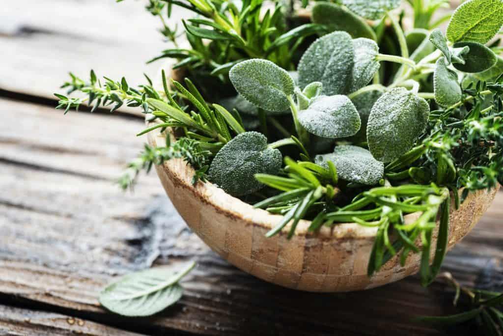 best-herbs-for-bruises