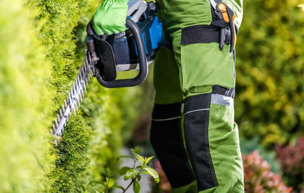 handling-a-hedge-trimmer