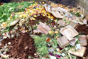 beginners-guide-to-composting