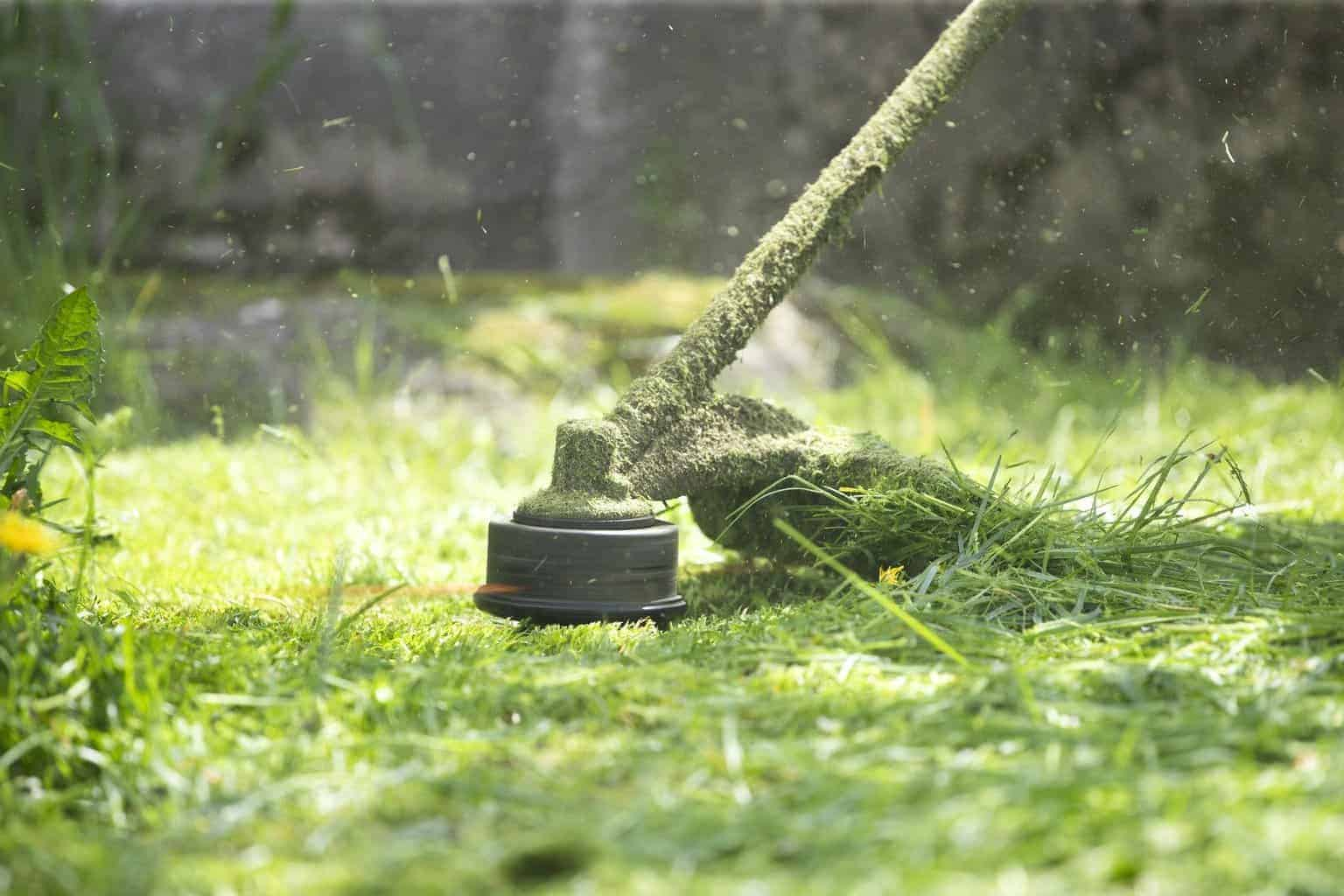 edger-vs-trimmer-lawn-care-review-guide